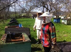 Купить мед в Минске